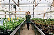 Eine junge Frau im Glashaus mit Kräuterpflanzen in der Hand